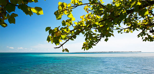 Quilalea Sencar Island View